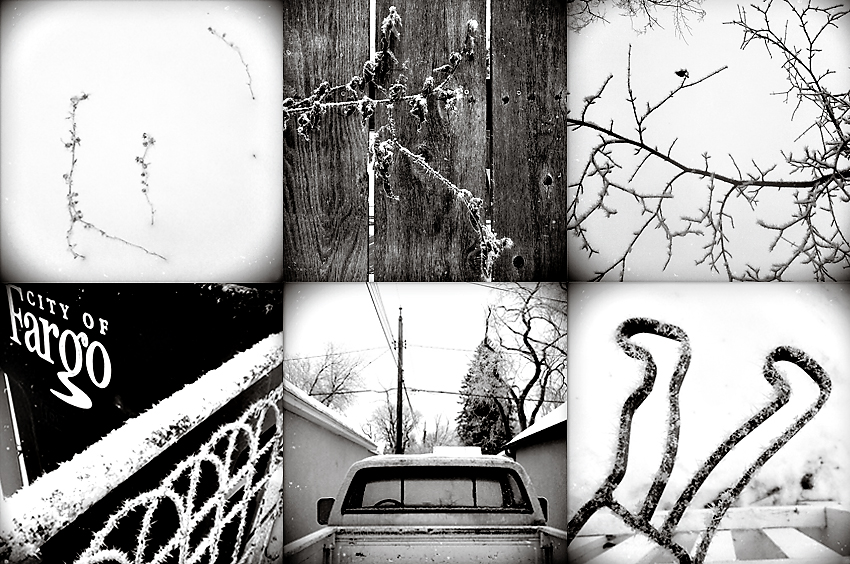 Frosty Photographs